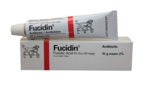fucidin cream anti biotic anti bacterial cream for skin